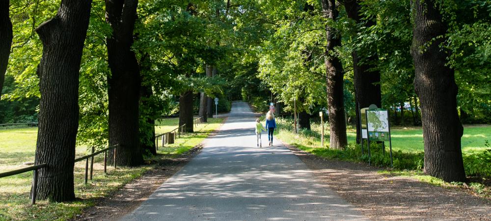 Location & Environment - Churfuerstliche Waldschaenke Moritzburg